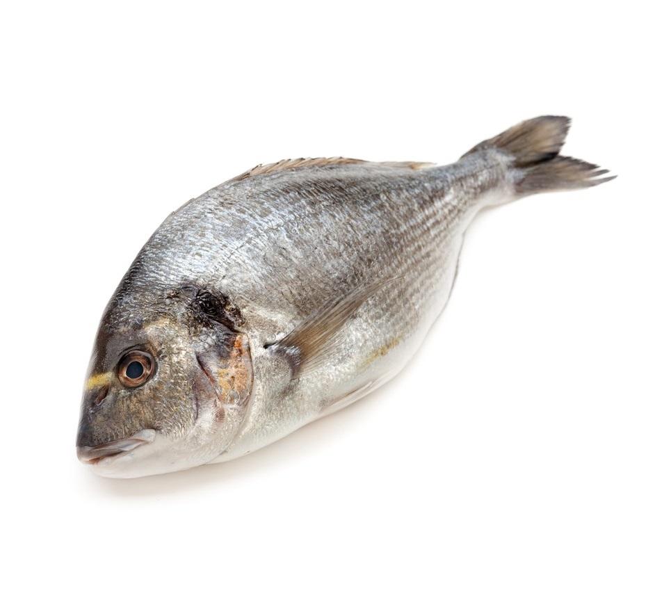 Прайс рыба с картинками
